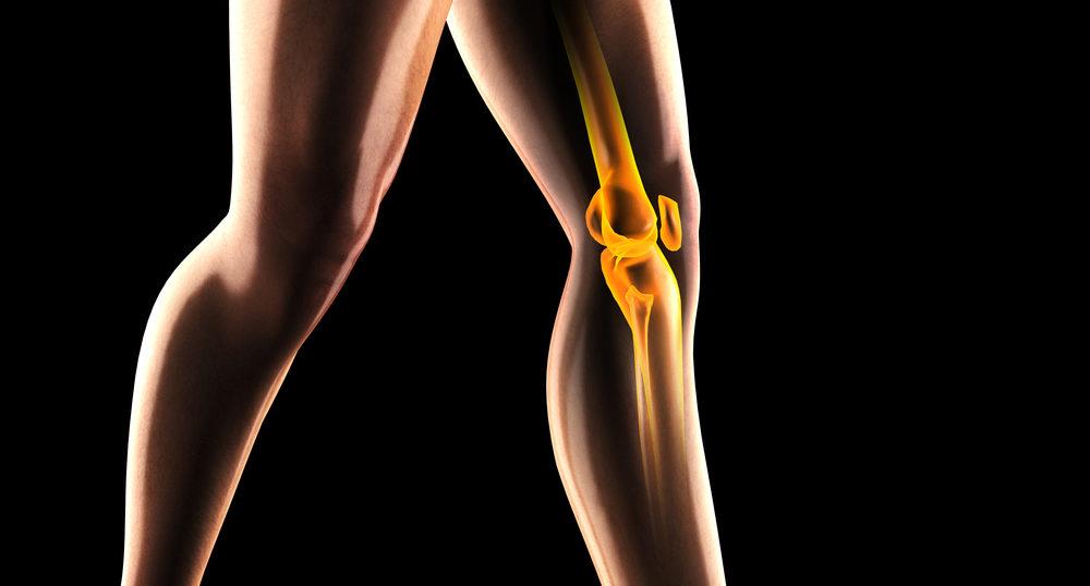 初級編☆「変形性膝関節症」の基本 – 日本関節病学会